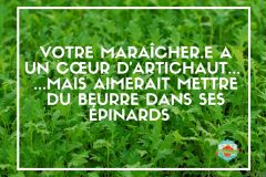 Maraicher-artichaud