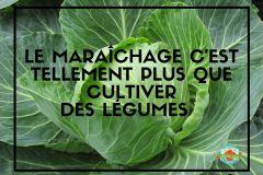maraichage-plus-que-legumes