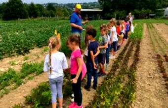 Éducation alimentaire : Le Champ des Possibles a accueilli plusieurs classes de primaire