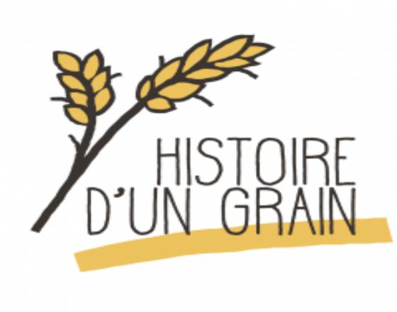 Histoire d'un grain