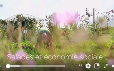 Découvrir l'économie sociale à travers l'agriculture: une animation Autre-Terre