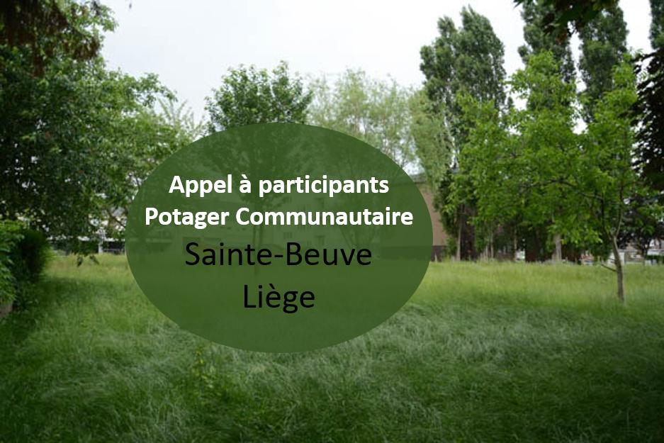 Vous souhaitez vous investir dans un potager collectif à Liège? participez aux jardins partagés de Sainte Beuve