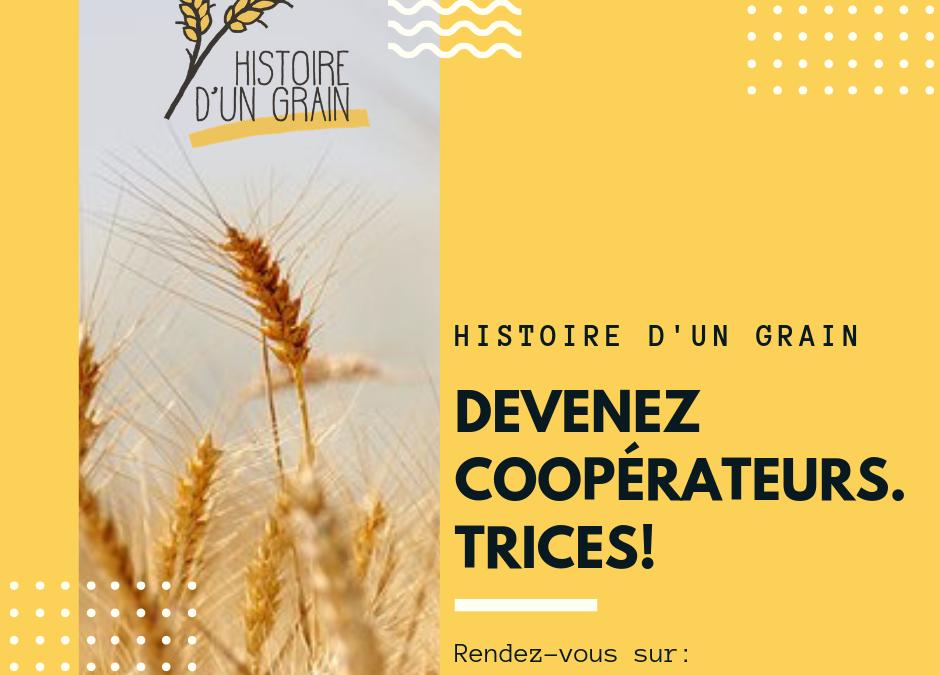 Histoire d'un grain SCRLFS est ouvert à toutes et tous !