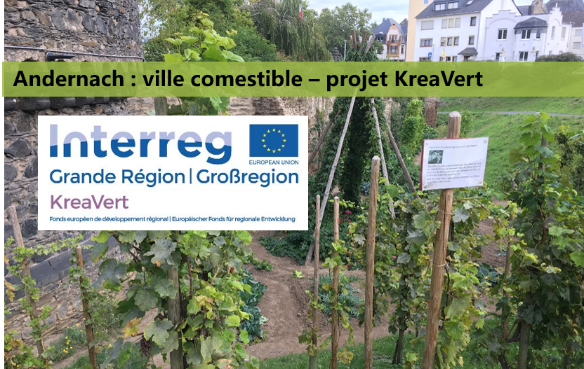Visite Andernach « Ville Comestible » (Projet Interreg KreaVert) et offre d'emploi