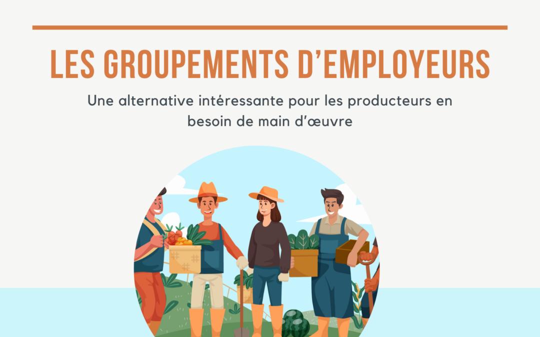 Les groupements d'employeurs : une alternative intéressante pour les producteurs en besoin de main d'œuvre