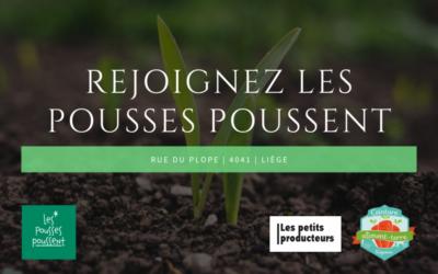 Habitant.es de St Walburge (et autres liégeois.es) : participez au CSA Les Pousses Poussent