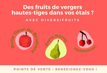 Epiceries, magasins à la ferme, boulangeries : devenez distributeurs de fruits hautes-tiges avec Diversifruits